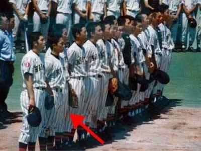 小泉進次郎 学歴 高校 野球