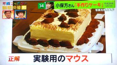 小保方晴子 スイーツ 手作りケーキ