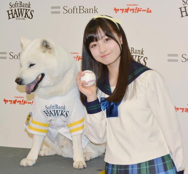 橋本環奈 ソフトバンクCM おとうさん犬