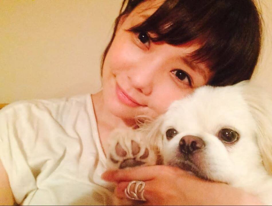 倉科カナ 家族 犬